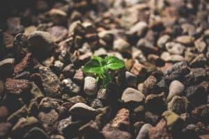 Existenzgründung – zwischen Beratung, Motivation & Sichtbarkeit